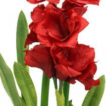 Künstliche Amaryllis Rot 3 Seidenblumen auf Moosballen H64cm