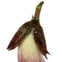 Aubergine 18,5cm Violett