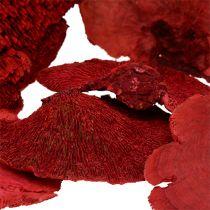 Baumschwamm Rot 1kg