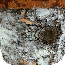 Birkentopf mit Rand klein Ø14cm H10,5cm Weiß