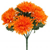 Chrysantheme Orange mit 7 Blüten
