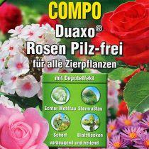 Compo Duaxo Rosen Pilzfrei 50ml