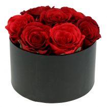 Blumenbox Rosenbox Schwarz rund Ø18cm - Ø20cm 2St