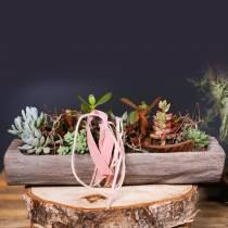 Dekoschale Paulownia Holz 49cm x 14cm H7cm