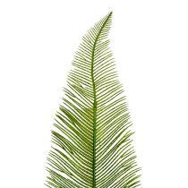 Farnblätter Grün 59cm 6St