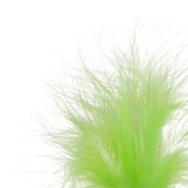 Feder zum Stecken L30cm Hellgrün 12St