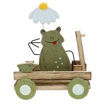 Frosch im Wagen Natur, Grün 19cm x 7cm x 14cm 4St