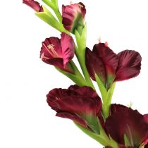 Gladiole Real-Touch Bordeaux 93cm