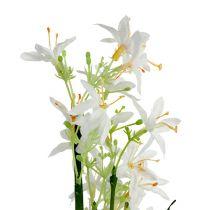 Grasbusch mit Blüten Grün, Weiß 3St