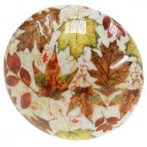 Holzpilz Deko Herbstlaub Weiß, Bunt Herbstdeko Ø13cm H19cm