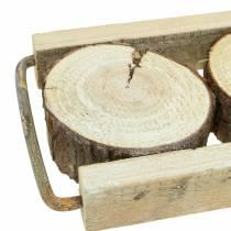 Dekotablett Holz mit Baumscheiben 34cm x 12cm H3cm