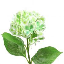 Hortensie künstlich Grün, Weiß 68cm