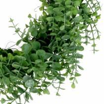 Kranz Eukalyptus Grün Ø36cm