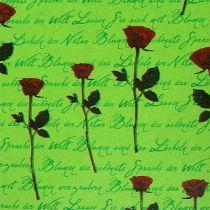Manschettenpapier 25cm 100m Grün Rose