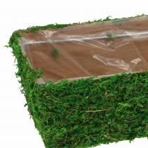 Pflanzgefäß Moos Grün 20×10cm H9cm