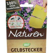 Floristik21 f r wiederverk ufer gro handel und lagerverkauf for Gelbtafeln gegen zikaden