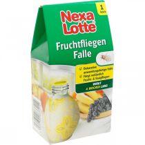 Nexa Lotte® Fruchtfliegen-Falle, Dekorativer Insektenköder