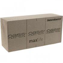 OASIS® NatureSource Ziegel Steckschaum 23cm×11cm×7cm 10St