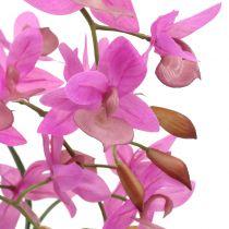 Orchidee im Topf Violett H55cm