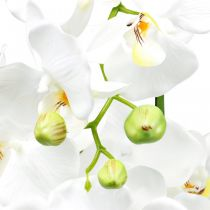 Künstliche Orchideen für den Topf Weiß 80cm