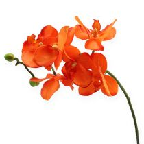 Orchideenzweig Orange 61cm