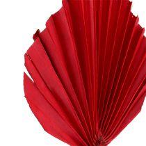 Palmspear mini Rot 100St