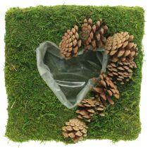 Pflanzkissen Herz Moos und Zapfen Quadratisch 25×25cm