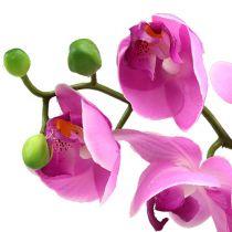 Orchidee Phalaenopsis Pink 77cm
