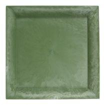 Plastikteller Grün eckig 19,5cm x 19,5cm