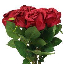 Rose Rot 44cm 6St