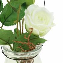 Rose im Glas Weiß H23cm