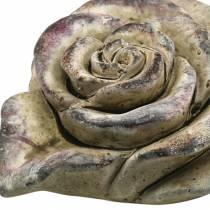 Beton-Rosen-Herz Grau, Violett Ø13 H5cm 3St