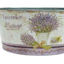 Pflanzschale 3-Set rund Lavendel Ø17-23cm