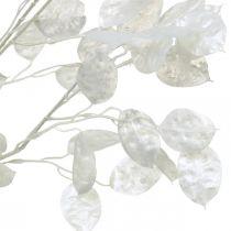 Dekozweig Silberblatt Weiß Lunaria Zweig Kunstzweig 70cm