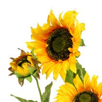 Sonnenblume Gelb 85cm