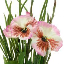 Stiefmütterchen mit Moosballen Rosa 31cm