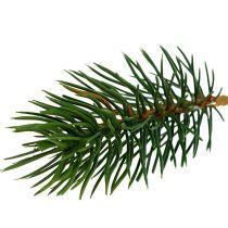 Tannenspitzen grün 10cm 36St