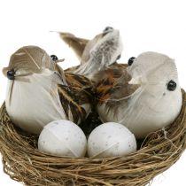 Vogelnest mit Eiern und Vogel 6St