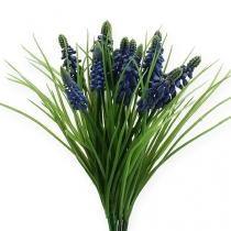 Traubenhyazinthen 28cm - 30cm Blau 15St