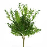 Asparaguspick 24cm