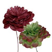 Blüte aus Foam 7cm Grün/Bordeaux 12St