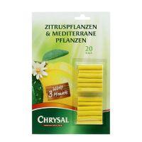Chrysal Düngestäbchen Zitruspflanzen 20St
