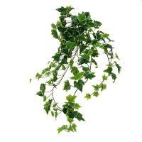 Efeuhänger 80cm Weiß-Grün