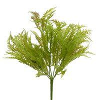 Farnbusch Grün 30cm