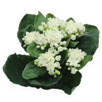 Kalanchoe Kunstblume Weiß 20cm
