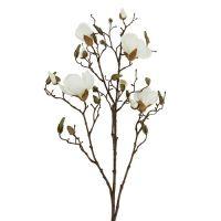 Magnolienzweig Creme 115cm