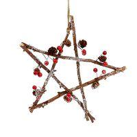 Stern zum Hängen mit Zapfen,Bereen 30cm