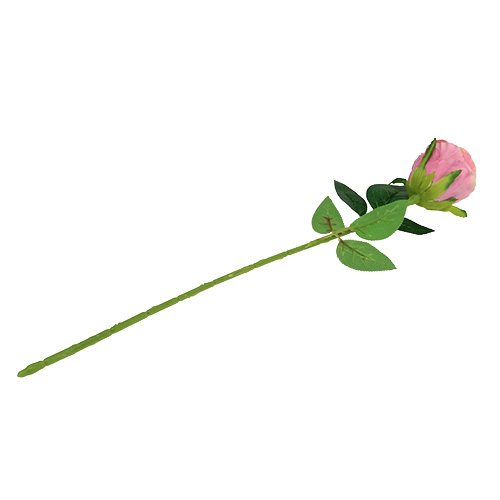 Deko rose 6cm altrosa l50cm 1st gro handel und lagerverkauf for Deko altrosa