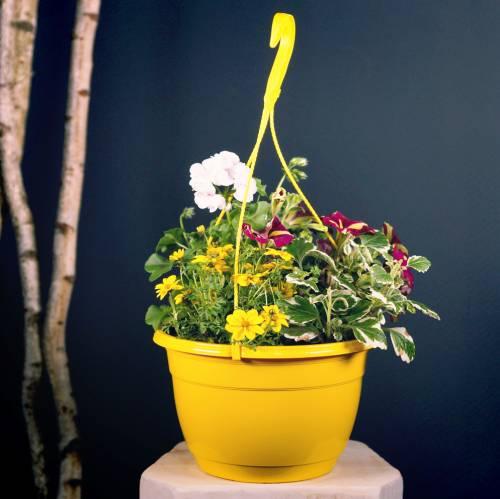 Blumenampel Ø25cm Terrakotta