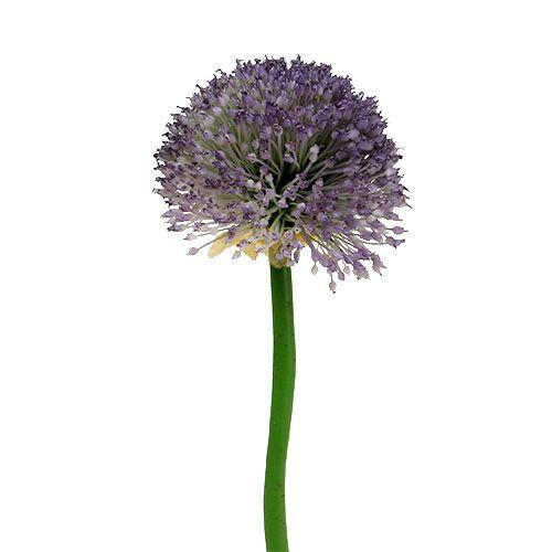 Allium 87cm lavendel